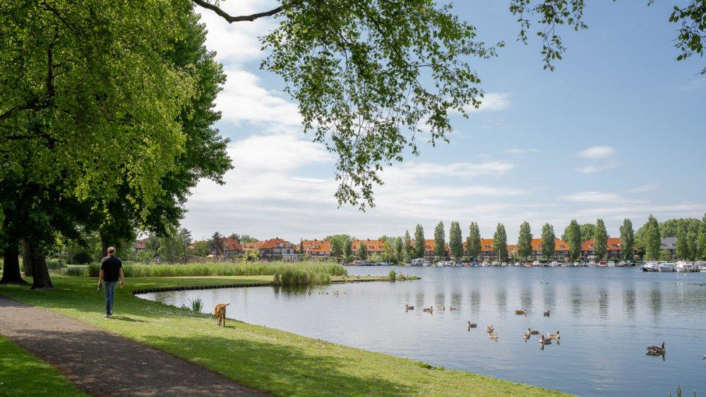 Bergse Plassen - Rotterdam Hillegersberg - by Wendy van Aal